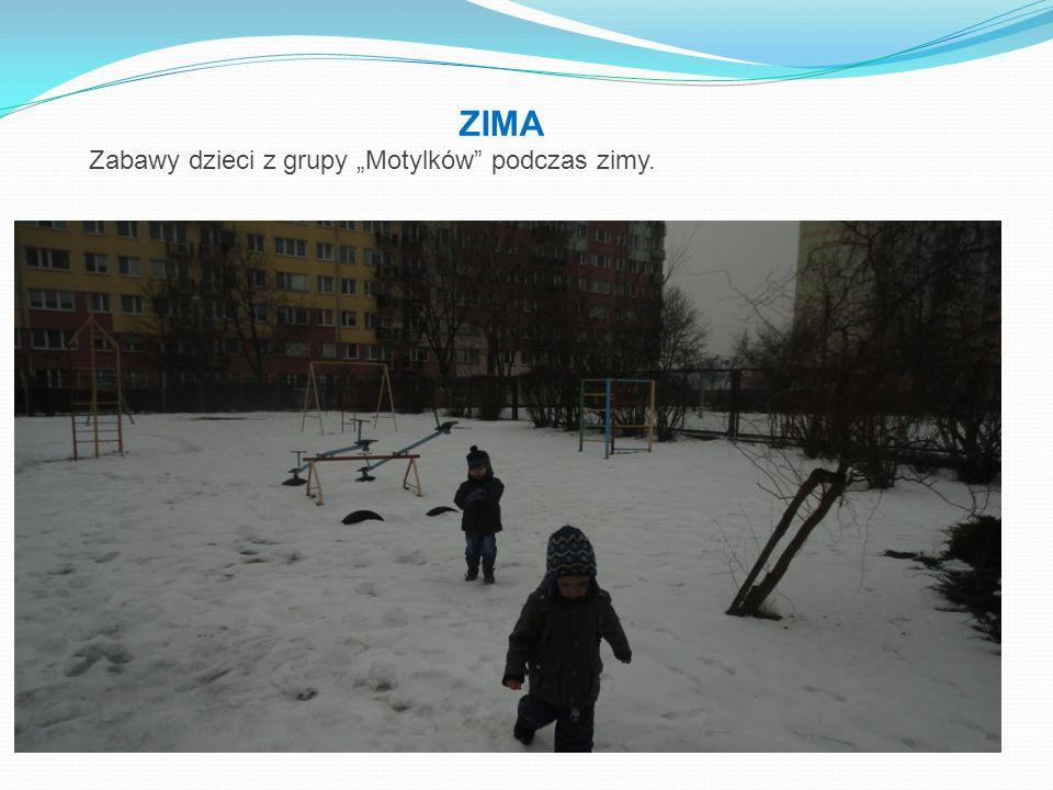 """ZIMA Zabawy dzieci z grupy """"Motylków podczas zimy."""