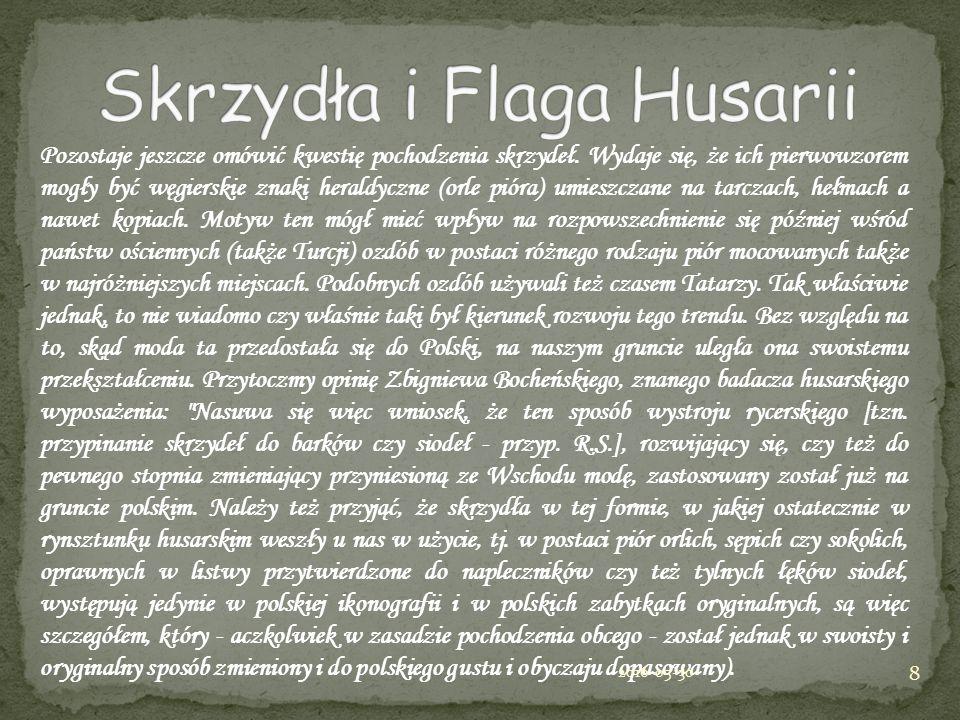 Pozostaje jeszcze omówić kwestię pochodzenia skrzydeł. Wydaje się, że ich pierwowzorem mogły być węgierskie znaki heraldyczne (orle pióra) umieszczane