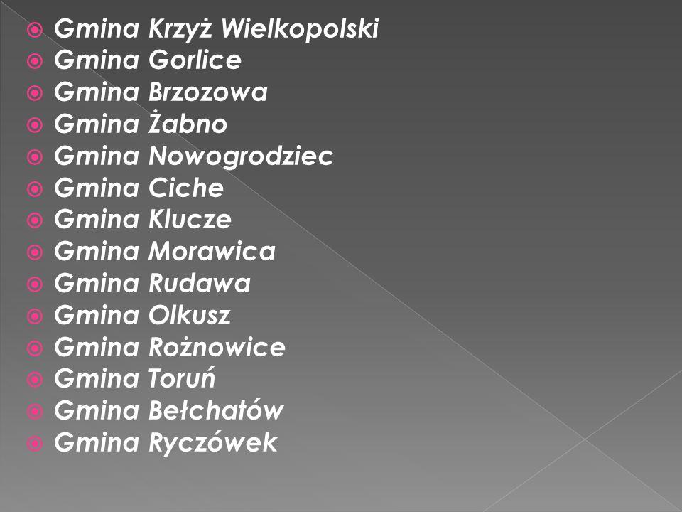 I miejsceWanesa BartoszVI BSP Gdów II miejsce Małgorzata Bukowiecka VI SP Sierosławice III miejsce Milena ObrałVIPSP Trąbki Alicja KołdrasVISP Kornatka