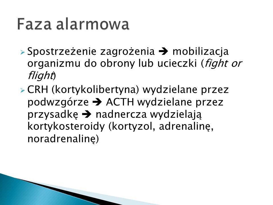  Spostrzeżenie zagrożenia  mobilizacja organizmu do obrony lub ucieczki (fight or flight)  CRH (kortykolibertyna) wydzielane przez podwzgórze  ACT