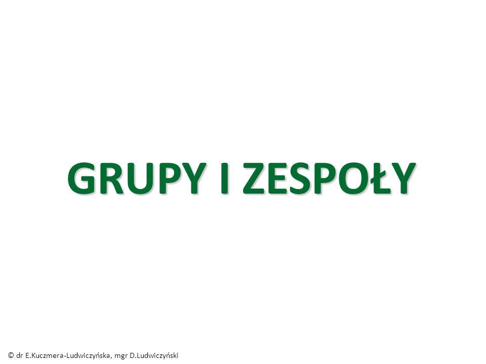 GRUPY I ZESPOŁY © dr E.Kuczmera-Ludwiczyńska, mgr D.Ludwiczyński