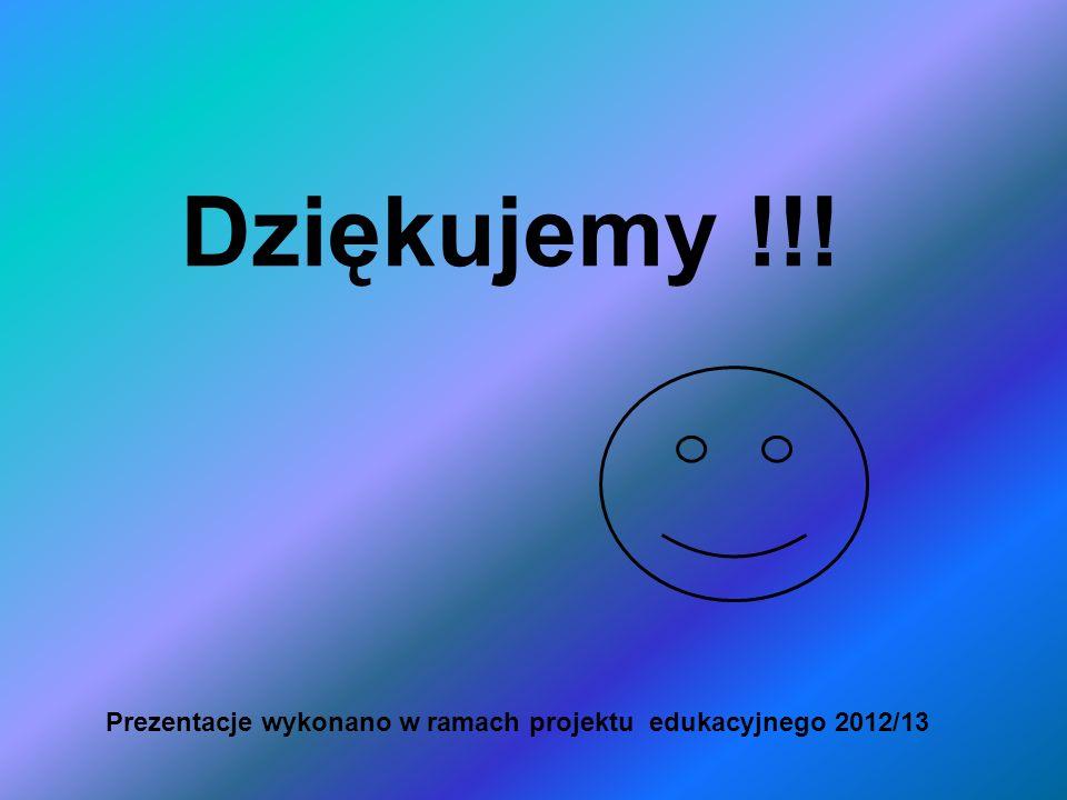 Dziękujemy !!! Prezentacje wykonano w ramach projektu edukacyjnego 2012/13