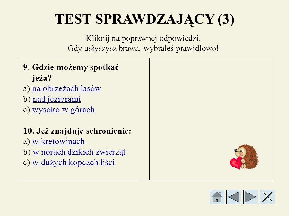 TEST SPRAWDZAJĄCY (2) 5.
