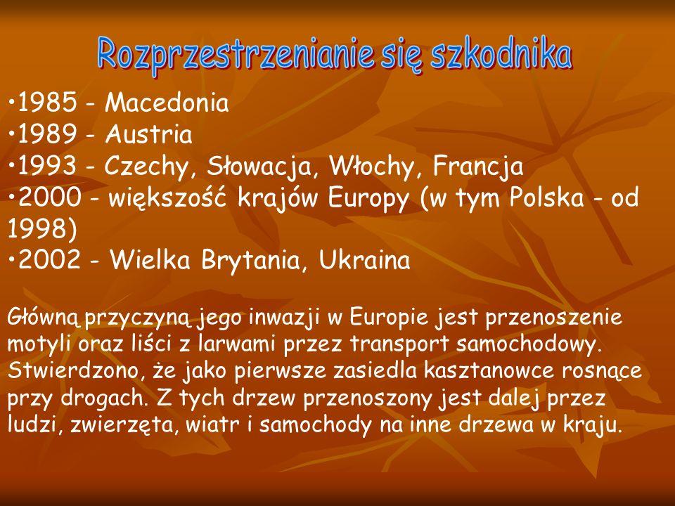 1985 - Macedonia 1989 - Austria 1993 - Czechy, Słowacja, Włochy, Francja 2000 - większość krajów Europy (w tym Polska - od 1998) 2002 - Wielka Brytania, Ukraina Główną przyczyną jego inwazji w Europie jest przenoszenie motyli oraz liści z larwami przez transport samochodowy.