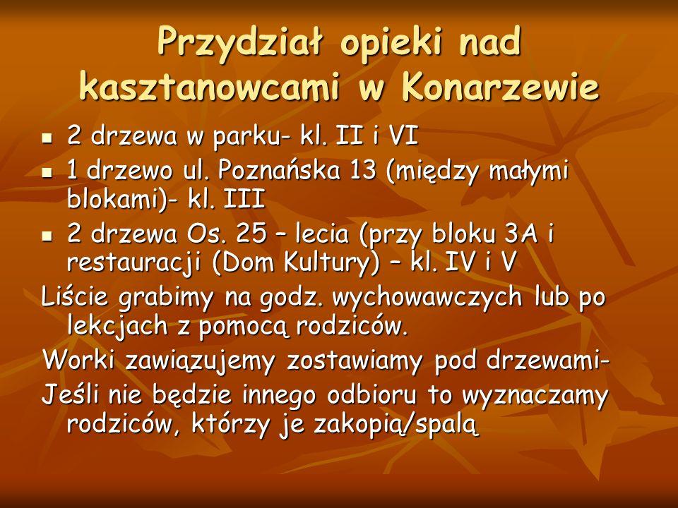 Przydział opieki nad kasztanowcami w Konarzewie 2 drzewa w parku- kl.