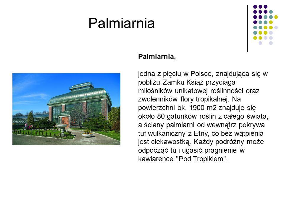 Palmiarnia, jedna z pięciu w Polsce, znajdująca się w pobliżu Zamku Książ przyciąga miłośników unikatowej roślinności oraz zwolenników flory tropikalnej.