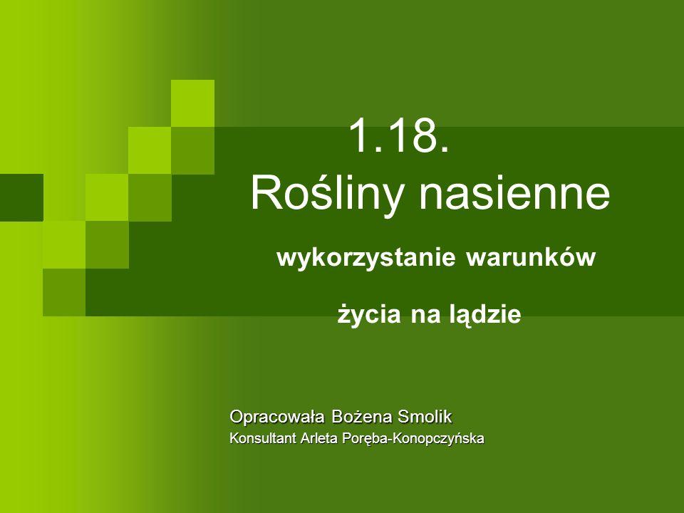 Źródła  J.Loritz-Dobrowolska i wsp.,Biologia 1, Operon,2009r.