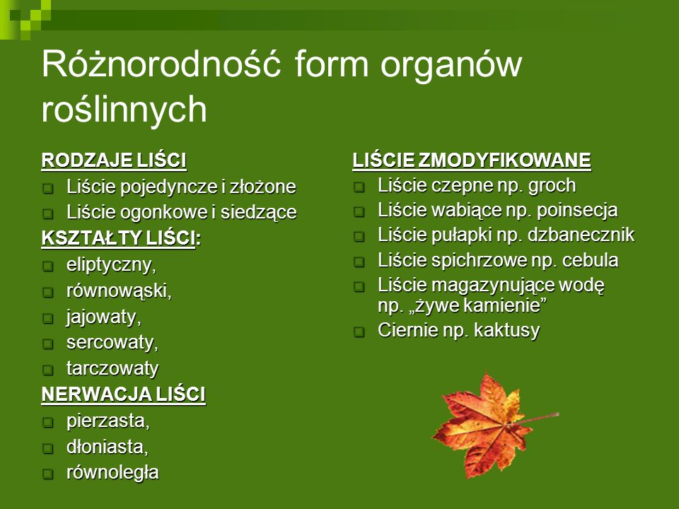 Różnorodność form organów roślinnych RODZAJE LIŚCI  Liście pojedyncze i złożone  Liście ogonkowe i siedzące KSZTAŁTY LIŚCI:  eliptyczny,  równowąski,  jajowaty,  sercowaty,  tarczowaty NERWACJA LIŚCI  pierzasta,  dłoniasta,  równoległa LIŚCIE ZMODYFIKOWANE  Liście czepne np.