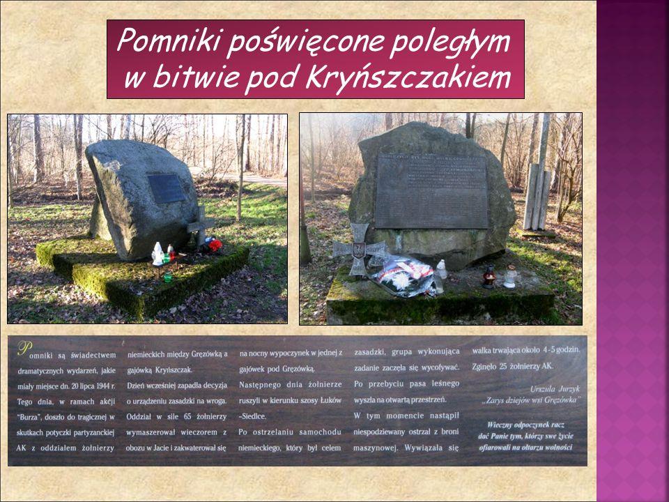 Pomniki poświęcone poległym w bitwie pod Kryńszczakiem