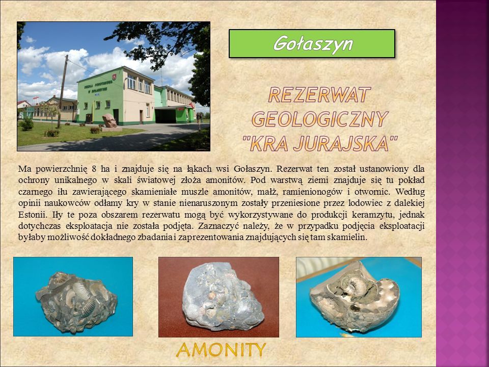 Ma powierzchnię 8 ha i znajduje się na łąkach wsi Gołaszyn. Rezerwat ten został ustanowiony dla ochrony unikalnego w skali światowej złoża amonitów. P