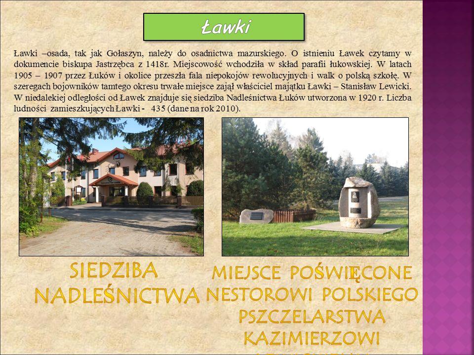Ławki –osada, tak jak Gołaszyn, należy do osadnictwa mazurskiego. O istnieniu Ławek czytamy w dokumencie biskupa Jastrzębca z 1418r. Miejscowość wchod