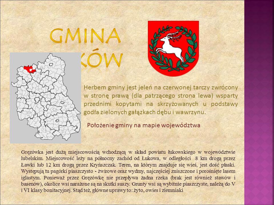 Herbem gminy jest jeleń na czerwonej tarczy zwrócony w stronę prawą (dla patrzącego strona lewa) wsparty przednimi kopytami na skrzyżowanych u podstawy godła zielonych gałązkach dębu i wawrzynu.