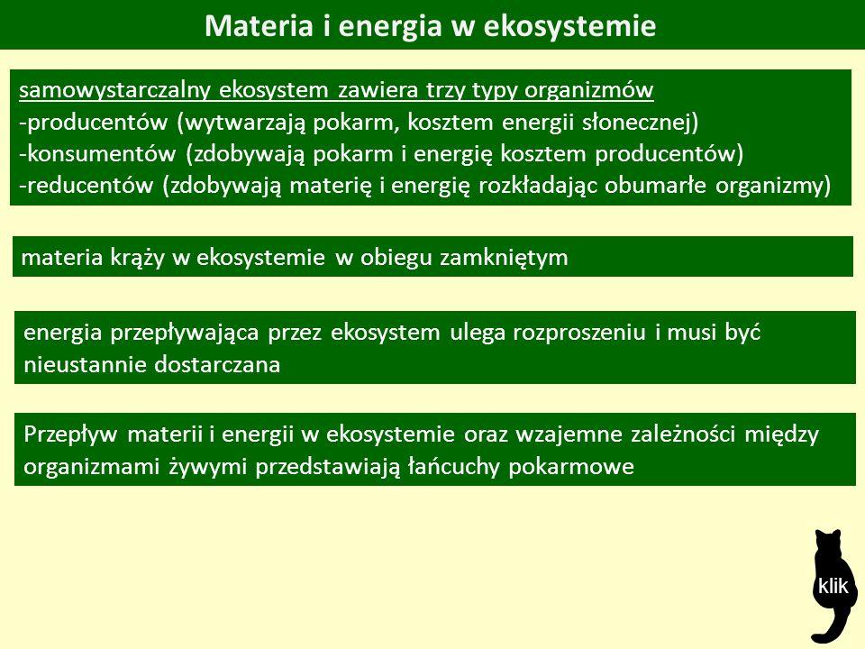 Materia i energia w ekosystemie samowystarczalny ekosystem zawiera trzy typy organizmów -producentów (wytwarzają pokarm, kosztem energii słonecznej) -konsumentów (zdobywają pokarm i energię kosztem producentów) -reducentów (zdobywają materię i energię rozkładając obumarłe organizmy) Przepływ materii i energii w ekosystemie oraz wzajemne zależności między organizmami żywymi przedstawiają łańcuchy pokarmowe energia przepływająca przez ekosystem ulega rozproszeniu i musi być nieustannie dostarczana materia krąży w ekosystemie w obiegu zamkniętym klik
