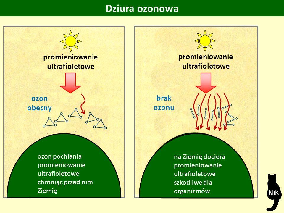 ozon obecny promieniowanie ultrafioletowe Dziura ozonowa ozon pochłania promieniowanie ultrafioletowe chroniąc przed nim Ziemię na Ziemię dociera promieniowanie ultrafioletowe szkodliwe dla organizmów brak ozonu klik