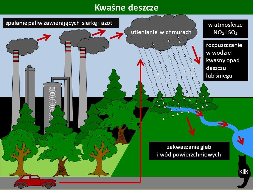 spalanie paliw zawierających siarkę i azot Kwaśne deszcze utlenianie w chmurach w atmosferze NO₂ i SO₂ rozpuszczanie w wodzie kwaśny opad deszczu lub śniegu zakwaszanie gleb i wód powierzchniowych klik