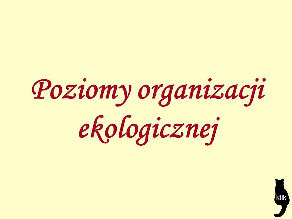 Poziomy organizacji ekologicznej klik