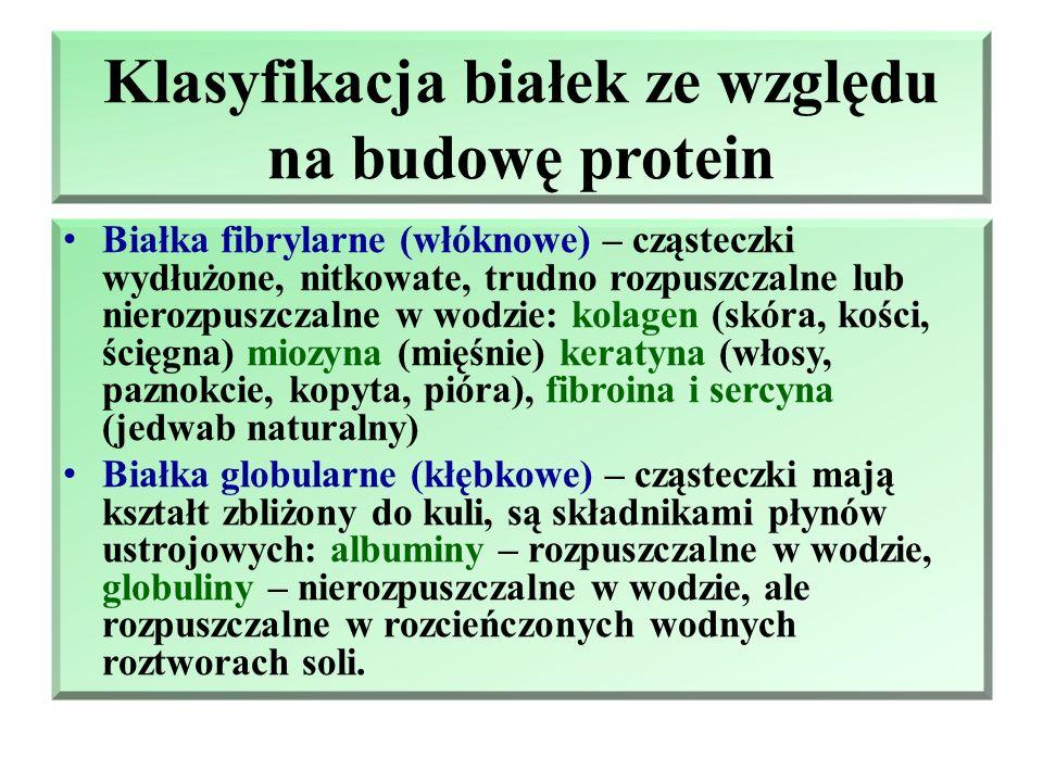 Klasyfikacja białek z względu na skład Proteiny – białka proste zbudowane wyłącznie z reszt aminokwasów. Proteidy – substancje białkowe, które w swoim