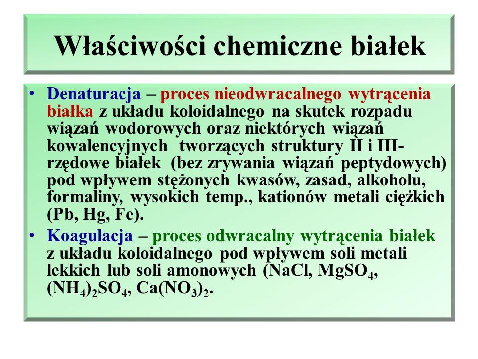 Klasyfikacja białek ze względu na budowę protein Białka fibrylarne (włóknowe) – cząsteczki wydłużone, nitkowate, trudno rozpuszczalne lub nierozpuszcz