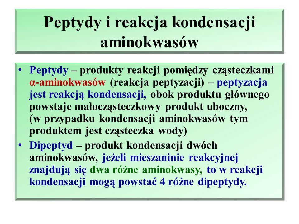 Peptydy i białka Reakcja kondensacji α-aminokwasów Peptydy Białka i ich struktury Klasyfikacja białek Właściwości białek
