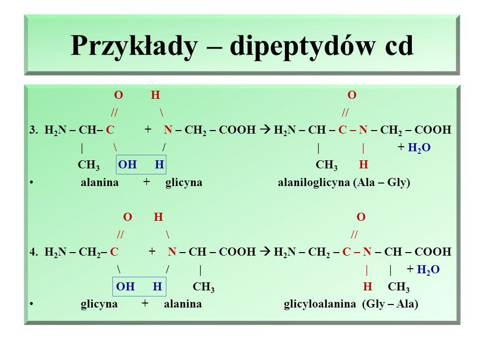 Przykłady – dipeptydów Mieszanina reakcyjna zawiera: alaninę (Ala), glicynę (Gly) : dipeptydy, które powstać: 1)Ala – Ala; 2) Gly – Gly; 3) Gly – Ala; 4) Ala-Ggly: O H O // \ // 1.