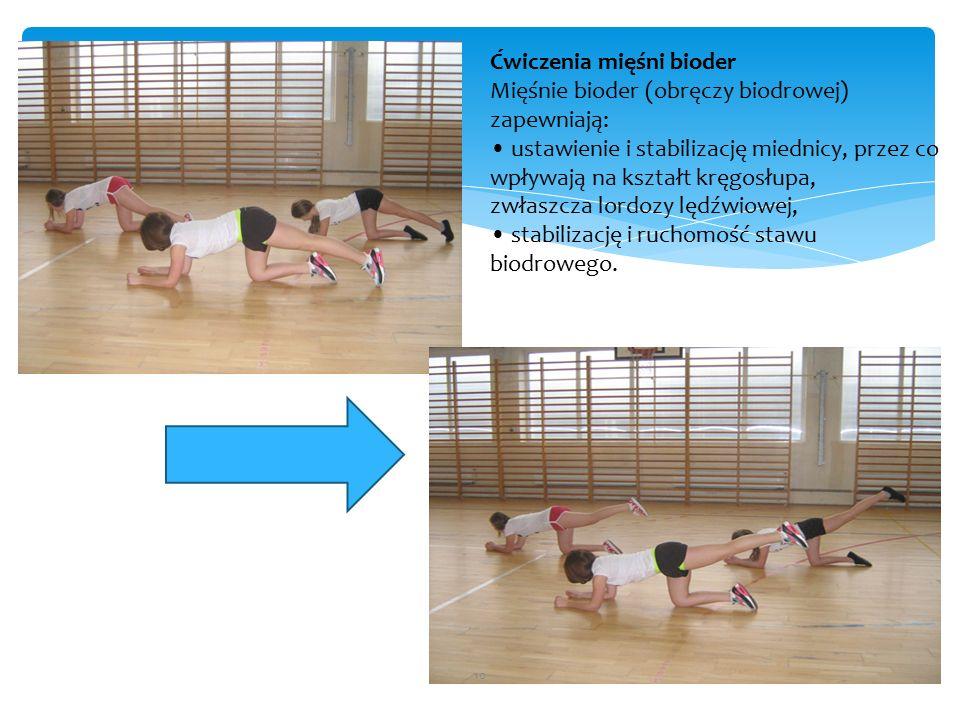 Ćwiczenia mięśni bioder Mięśnie bioder (obręczy biodrowej) zapewniają: ustawienie i stabilizację miednicy, przez co wpływają na kształt kręgosłupa, zwłaszcza lordozy lędźwiowej, stabilizację i ruchomość stawu biodrowego.