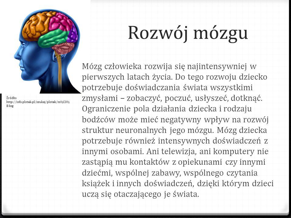Rozwój mózgu Mózg człowieka rozwija się najintensywniej w pierwszych latach życia. Do tego rozwoju dziecko potrzebuje doświadczania świata wszystkimi