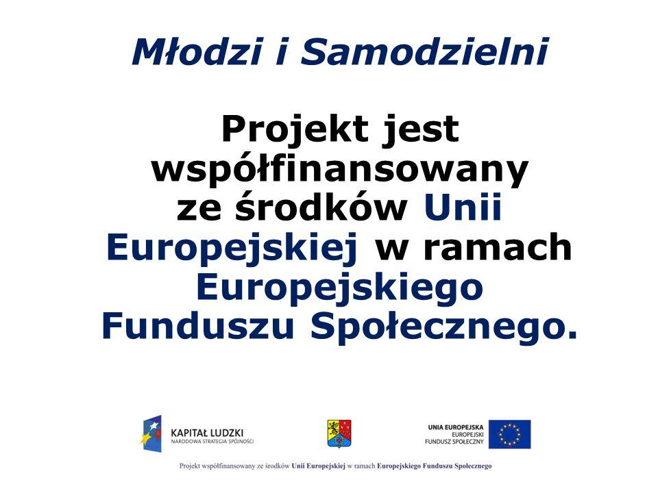 KLUB INTEGRACJI SPOŁECZNEJ Formy wsparcia 6.