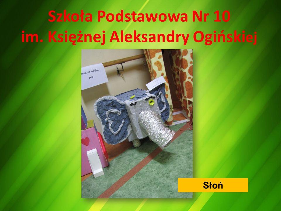 Szkoła Podstawowa Nr 10 im. Księżnej Aleksandry Ogiński ej Słoń