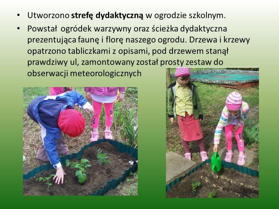 Utworzono strefę dydaktyczną w ogrodzie szkolnym. Powstał ogródek warzywny oraz ścieżka dydaktyczna prezentująca faunę i florę naszego ogrodu. Drzewa
