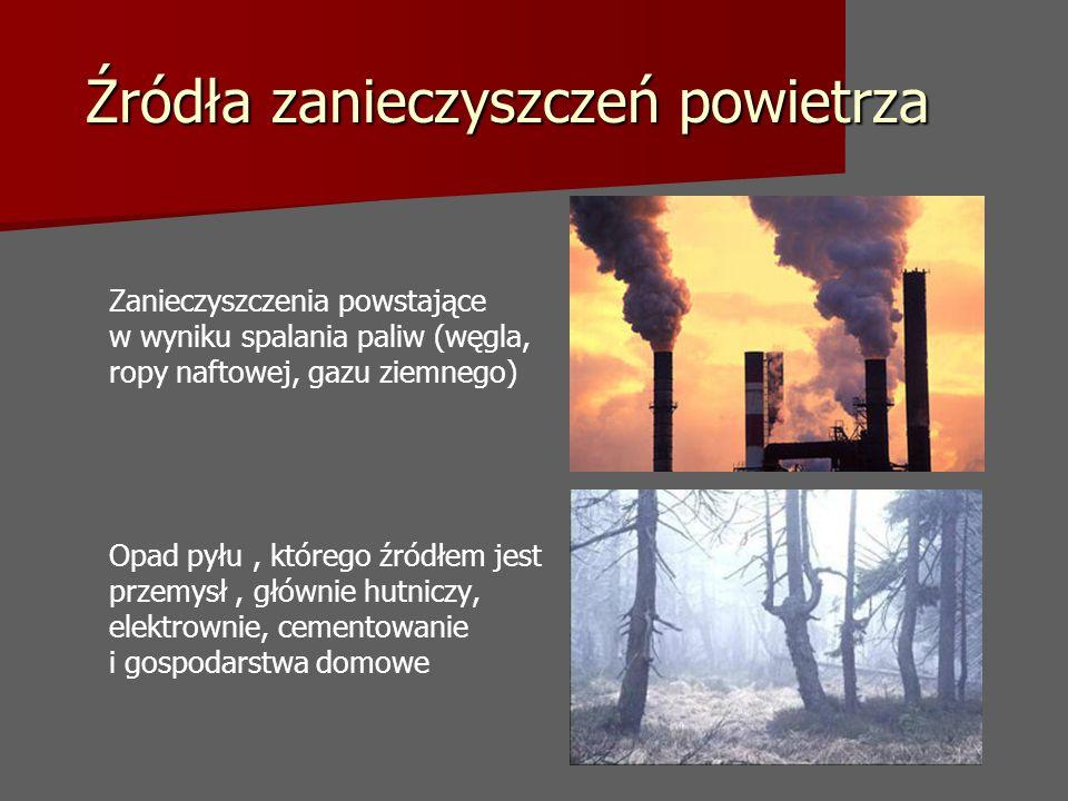 Źródła zanieczyszczeń powietrza Zanieczyszczenia powstające w wyniku spalania paliw (węgla, ropy naftowej, gazu ziemnego) Opad pyłu, którego źródłem jest przemysł, głównie hutniczy, elektrownie, cementowanie i gospodarstwa domowe
