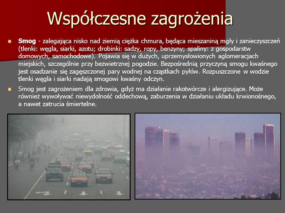 Współczesne zagrożenia Smog - zalegająca nisko nad ziemią ciężka chmura, będąca mieszaniną mgły i zanieczyszczeń (tlenki: węgla, siarki, azotu; drobinki: sadzy, ropy, benzyny; spaliny: z gospodarstw domowych, samochodowe).
