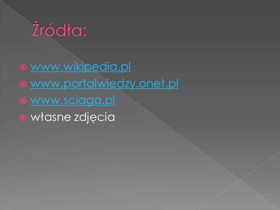  www.wikipedia.pl www.wikipedia.pl  www.portalwiedzy.onet.pl www.portalwiedzy.onet.pl  www.sciaga.pl www.sciaga.pl  własne zdjęcia