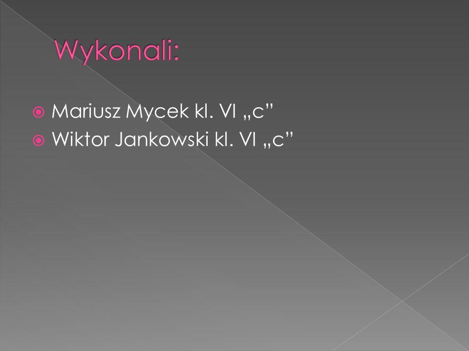 """ Mariusz Mycek kl. VI """"c  Wiktor Jankowski kl. VI """"c"""