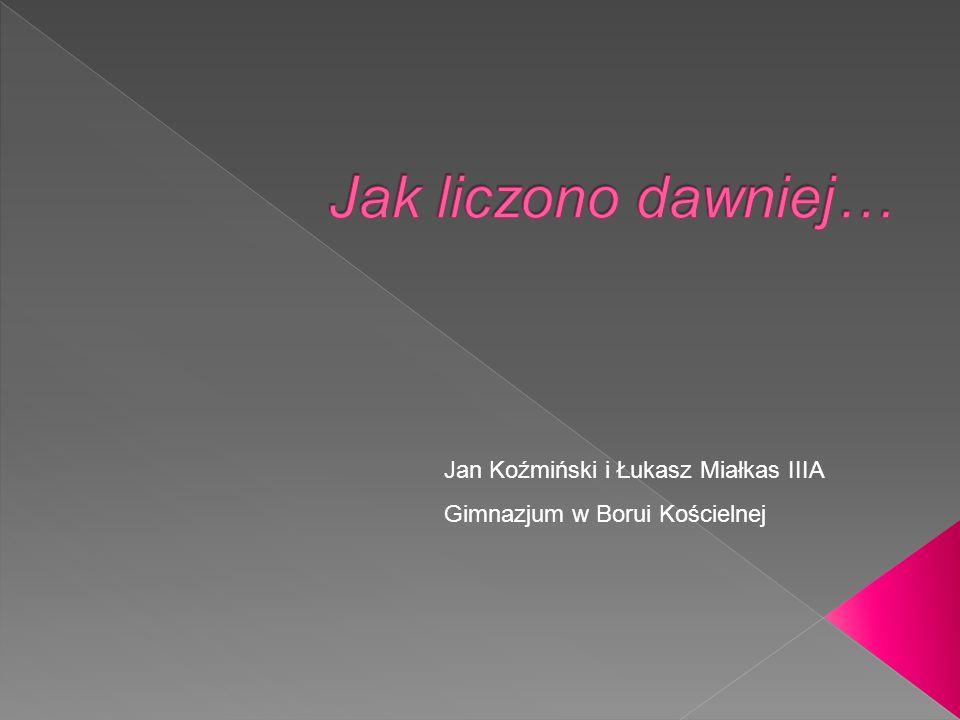 Jan Koźmiński i Łukasz Miałkas IIIA Gimnazjum w Borui Kościelnej