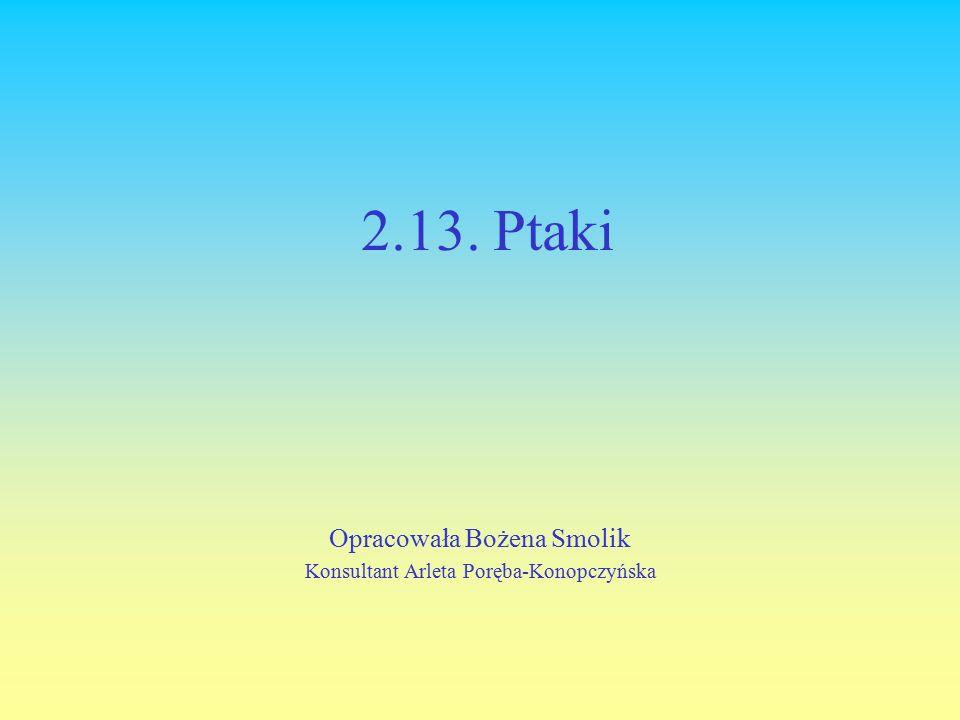 2.13. Ptaki Opracowała Bożena Smolik Konsultant Arleta Poręba-Konopczyńska