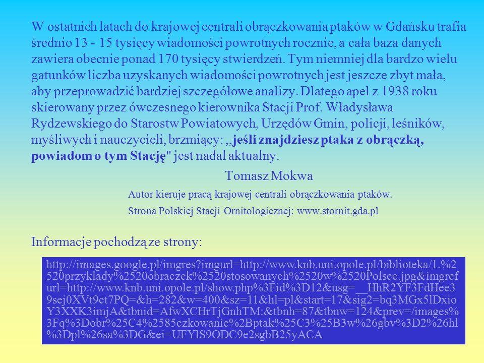 W ostatnich latach do krajowej centrali obrączkowania ptaków w Gdańsku trafia średnio 13 - 15 tysięcy wiadomości powrotnych rocznie, a cała baza danych zawiera obecnie ponad 170 tysięcy stwierdzeń.