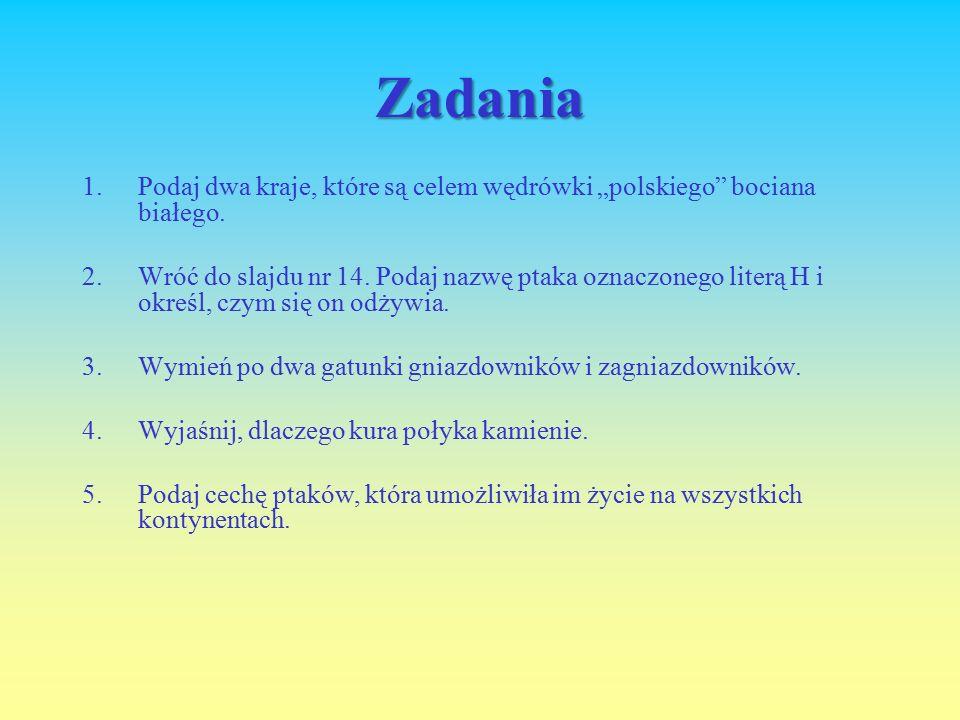 """Zadania 1.Podaj dwa kraje, które są celem wędrówki """"polskiego bociana białego."""