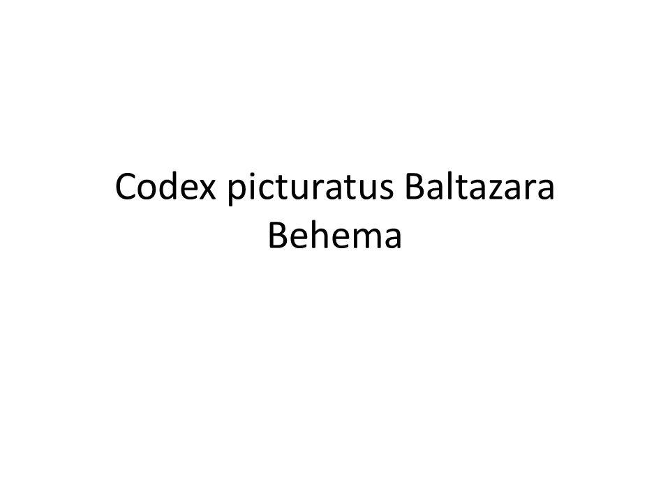 Codex picturatus Baltazara Behema