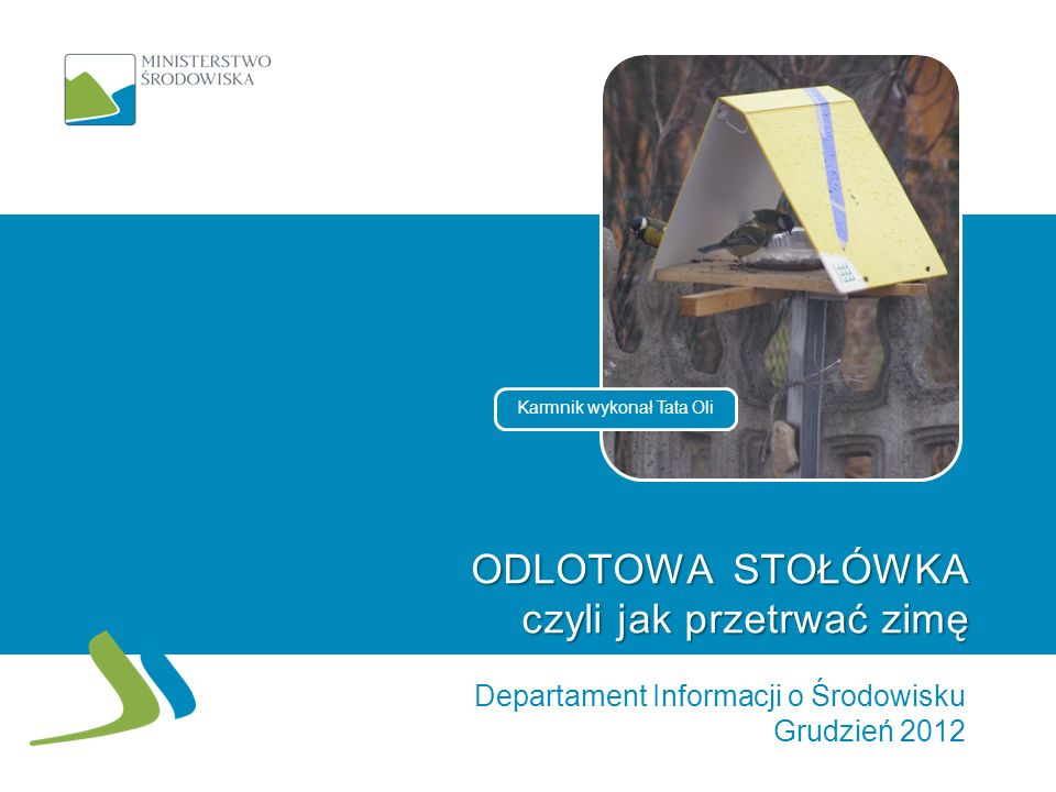 ODLOTOWA STOŁÓWKA czyli jak przetrwać zimę Departament Informacji o Środowisku Grudzień 2012 Karmnik wykonał Tata Oli