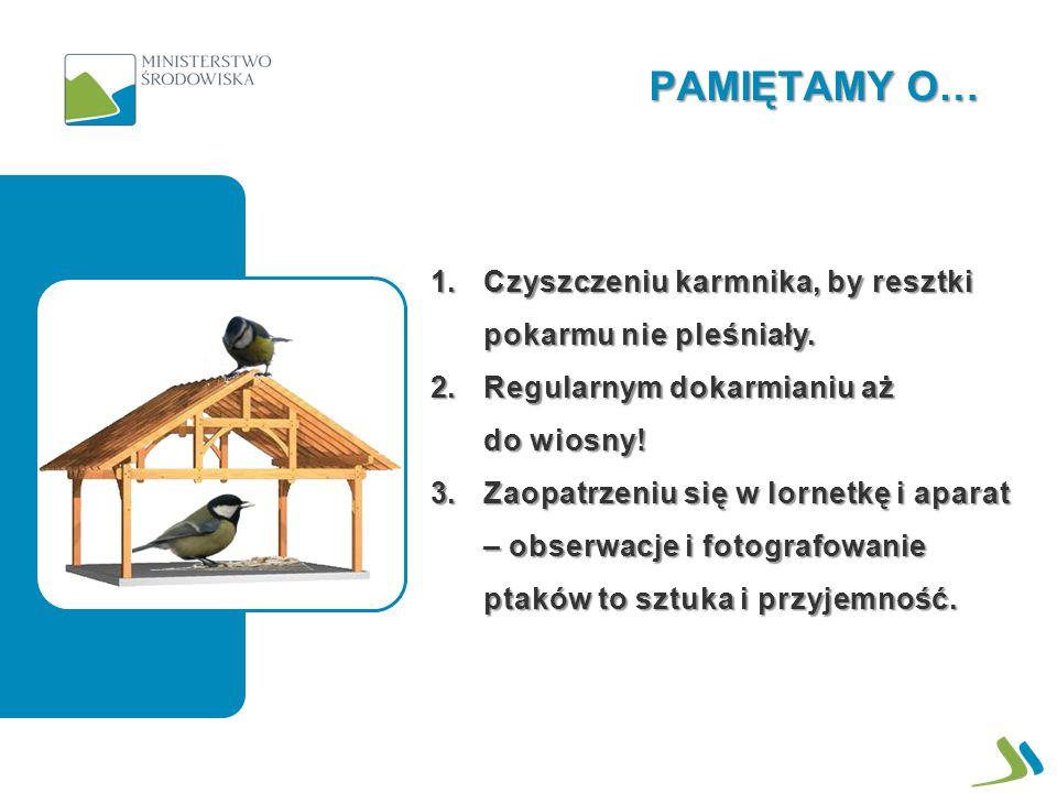 PTAKI DZIĘKUJĄ ZA WSPARCIE Departament Informacji o Środowisku Grudzień 2012