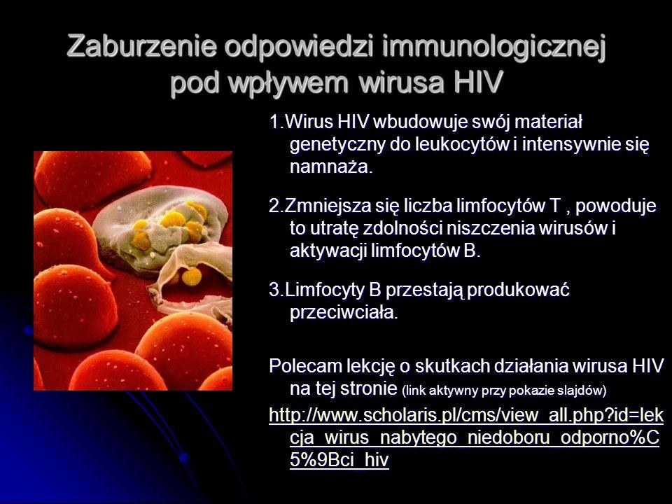 Zaburzenie odpowiedzi immunologicznej pod wpływem wirusa HIV 1.Wirus HIV wbudowuje swój materiał genetyczny do leukocytów i intensywnie się namnaża. 2