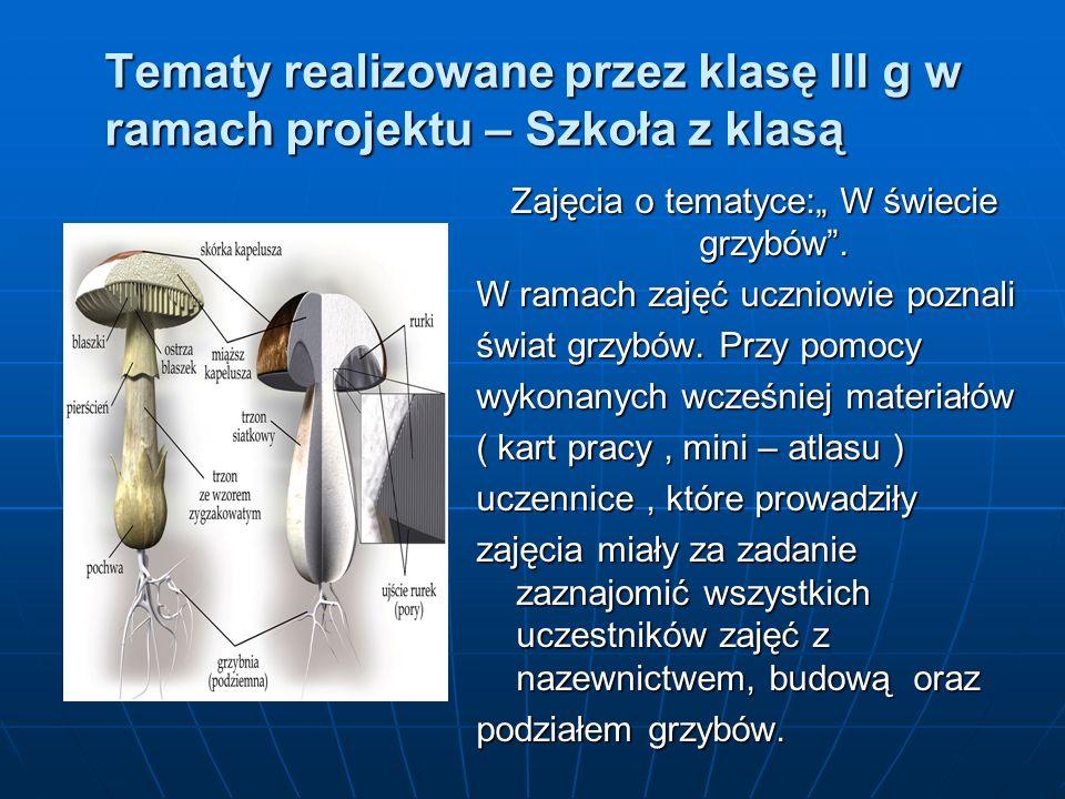 """Tematy realizowane przez klasę III g w ramach projektu – Szkoła z klasą Zajęcia o tematyce:"""" W świecie grzybów ."""