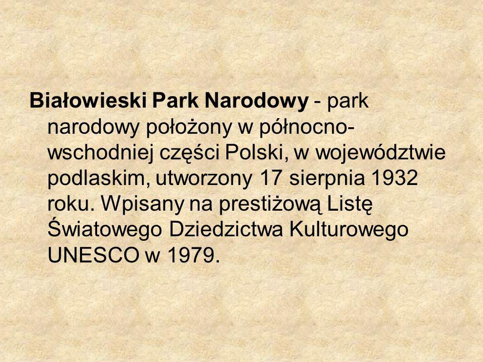 Białowieski Park Narodowy - park narodowy położony w północno- wschodniej części Polski, w województwie podlaskim, utworzony 17 sierpnia 1932 roku. Wp