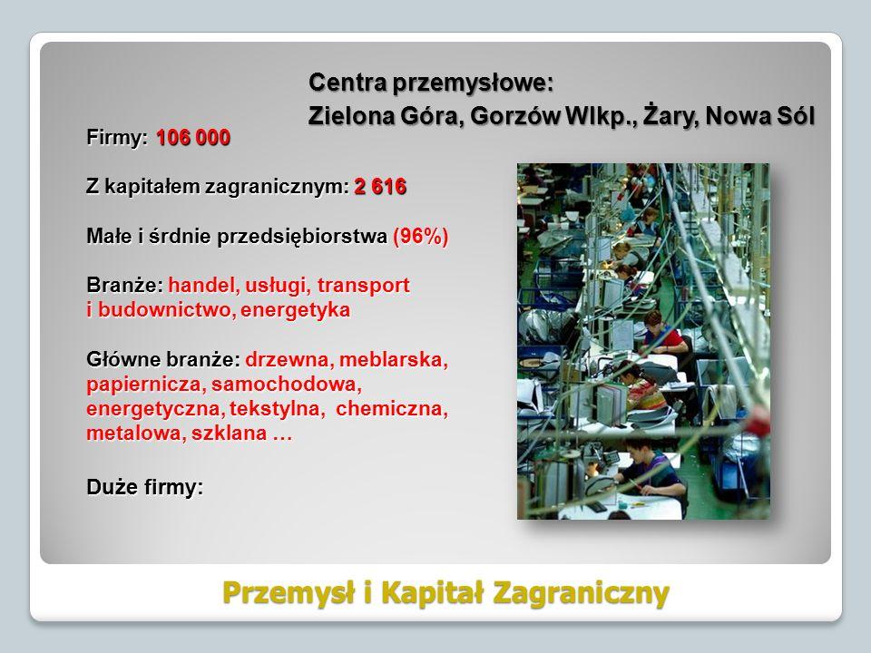 Przemysł i Kapitał Zagraniczny Firmy: 106 000 Z kapitałem zagranicznym: 2 616 Małe i śrdnie przedsiębiorstwa (96%) Branże: handel, usługi, transport i budownictwo, energetyka Główne branże: drzewna, meblarska, papiernicza, samochodowa, energetyczna, tekstylna, chemiczna, metalowa, szklana … Duże firmy: Centra przemysłowe: Zielona Góra, Gorzów Wlkp., Żary, Nowa Sól