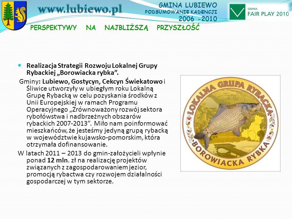 """Realizacja Strategii Rozwoju Lokalnej Grupy Rybackiej """"Borowiacka rybka ."""