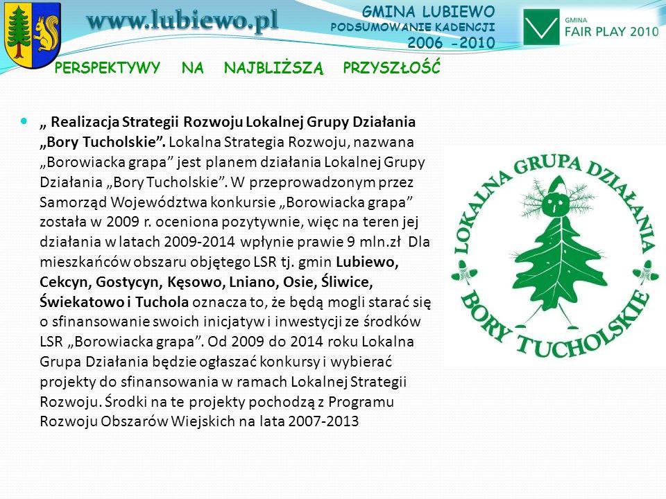 """"""" Realizacja Strategii Rozwoju Lokalnej Grupy Działania """"Bory Tucholskie ."""