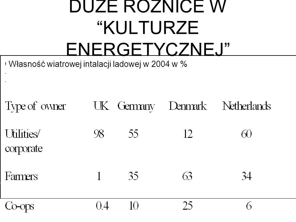 Własność wiatrowej intalacji ladowej w 2004 w % DUŻE RÓŻNICE W KULTURZE ENERGETYCZNEJ