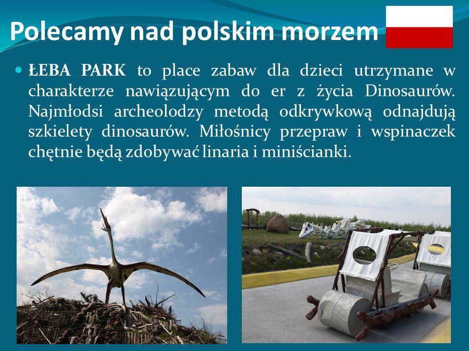 Polecamy nad polskim morzem ŁEBA PARK to place zabaw dla dzieci utrzymane w charakterze nawiązującym do er z życia Dinosaurów.