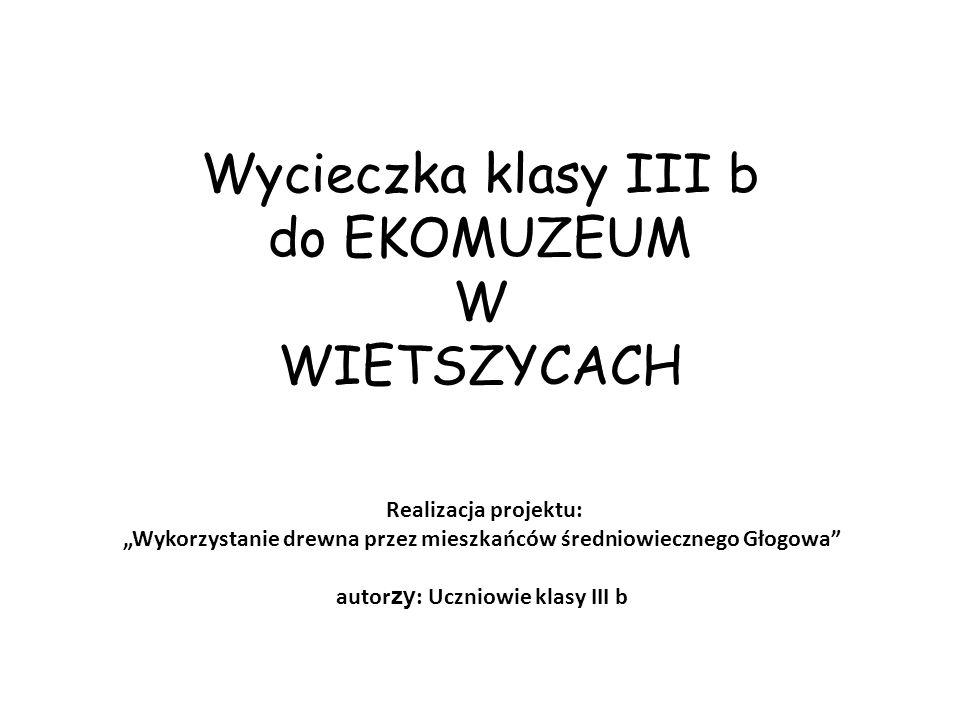 """Realizacja projektu: """"Wykorzystanie drewna przez mieszkańców średniowiecznego Głogowa autor zy : Uczniowie klasy III b"""
