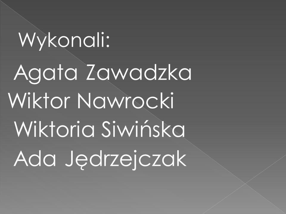 Wykonali: Agata Zawadzka Wiktor Nawrocki Wiktoria Siwińska Ada Jędrzejczak